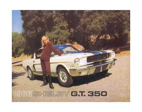 Ford Mustang Shelby Color Sales Brochure - 6 Pages - 8 Illustrations