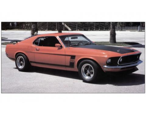 Ford Mustang Exterior Stripe Kit - Boss 302 - Black